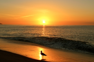 Goleta Beach Sunrise