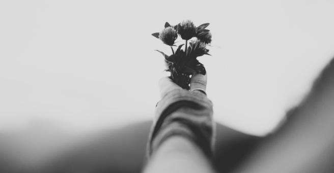 poetryalleviate